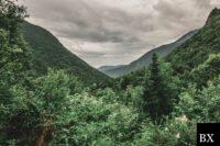 New Hampshire Mortgage Broker Bond