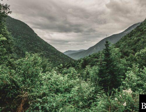 New Hampshire Mortgage Broker Bond: A Comprehensive Guide