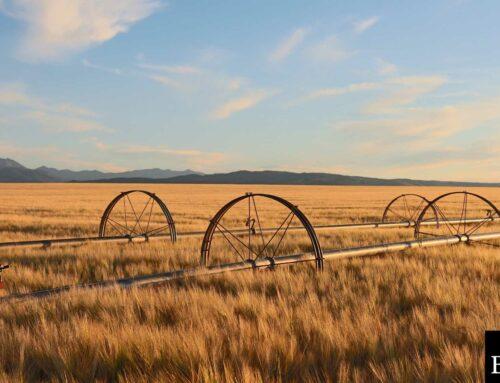 Montana Lost Title Bond: A Comprehensive Guide
