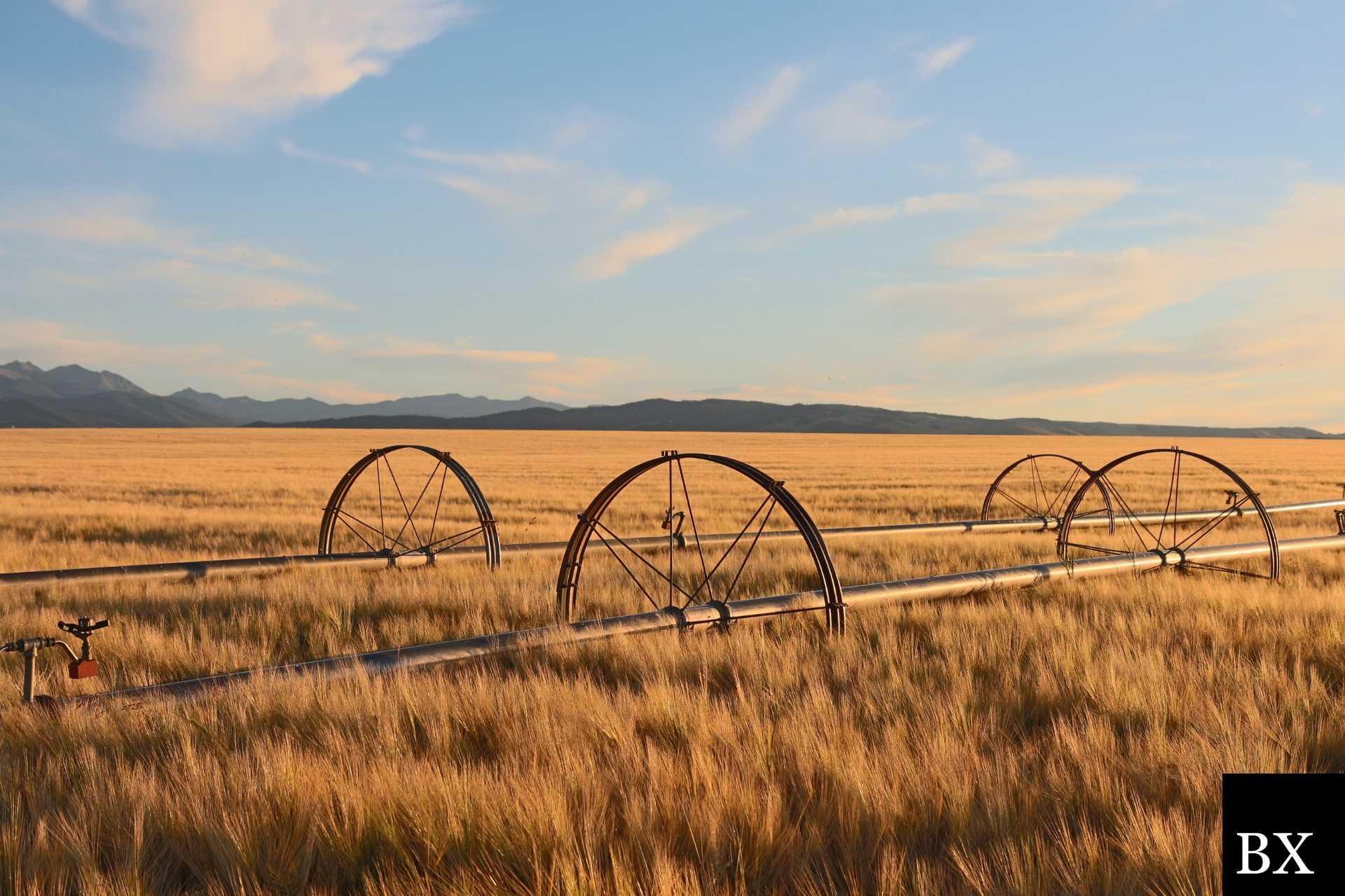 Montana Lost Title Bond: