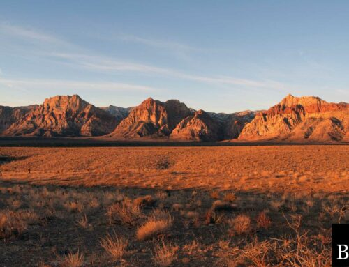 Nevada Lost Title Bond: A Comprehensive Guide