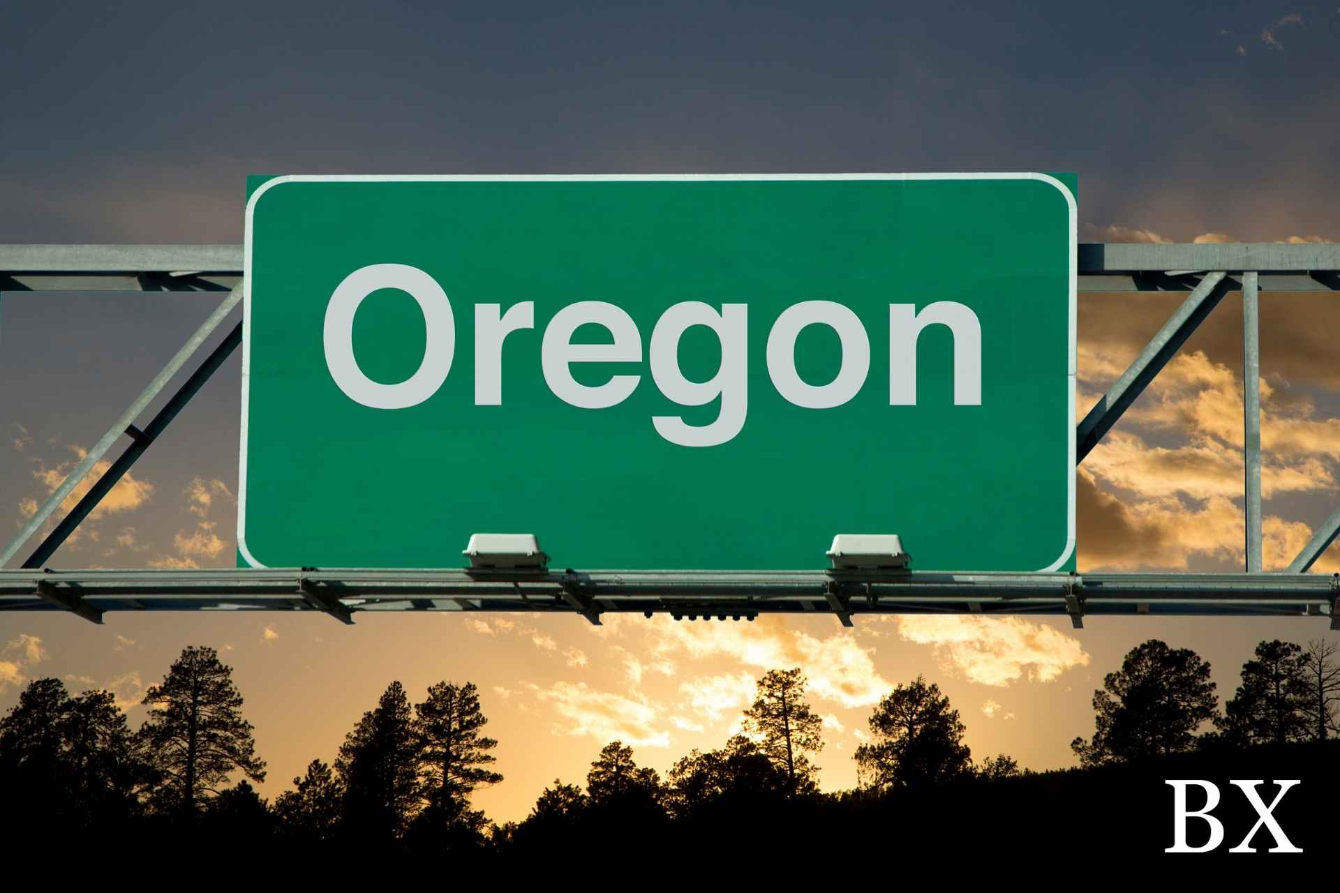 Oregon Public Works Bond